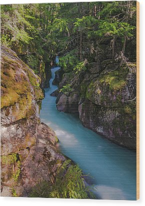 Wood Print featuring the photograph Avalanche Gorge 5 by Gary Lengyel