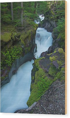 Wood Print featuring the photograph Avalanche Gorge 6 by Gary Lengyel