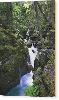 Avalanche Gorge Glacier National Park Wood Print