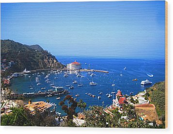 Avalon Harbor At Catalina Wood Print by Catherine Natalia  Roche