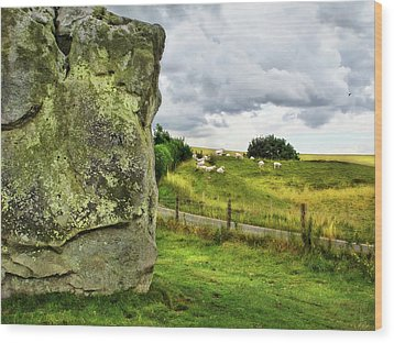 Avebury Standing Stone And Sheep Wood Print