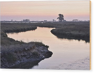 Aveiro Wetlands Wood Print by Marek Stepan