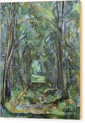 Avenue At Chantilly Wood Print by Paul Cezanne