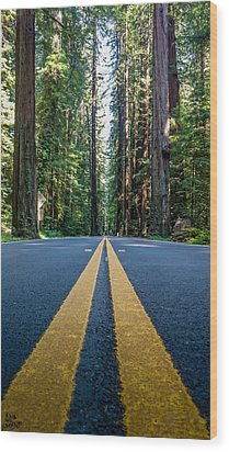 Avenue Of The Giants Wood Print by Alpha Wanderlust