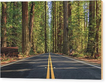 Wood Print featuring the photograph Avenue Of The Giants by James Eddy