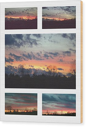 Wood Print featuring the photograph Awaitng Dust by Robin Coaker