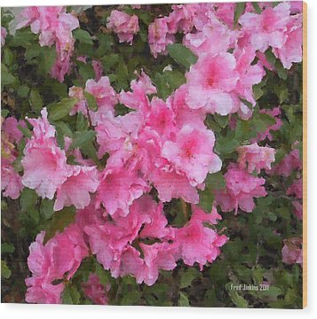 Azalea Watercolor  Wood Print by Fred Jinkins