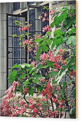 Azaleas At The Window   Wood Print by Sarah Loft