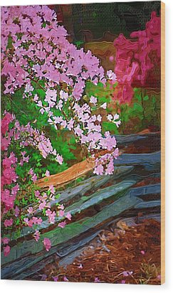 Wood Print featuring the photograph Azaleas Over The Fence by Donna Bentley