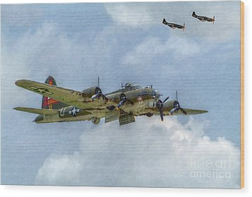 B-17 Flying Fortress Bomber  Wood Print by Randy Steele
