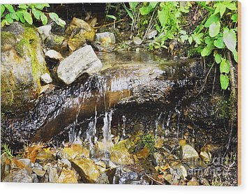 Babbling Brook Wood Print by Janie Johnson