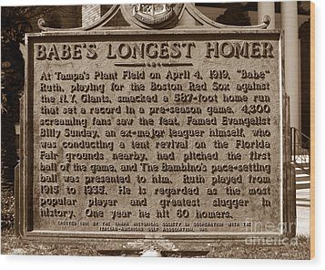 Babes Longest Homer Wood Print by David Lee Thompson