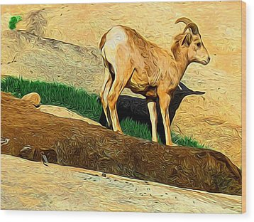Baby Desert Bighorn In Abstract Wood Print