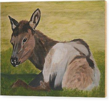 Baby Elk Wood Print by Robert Tower