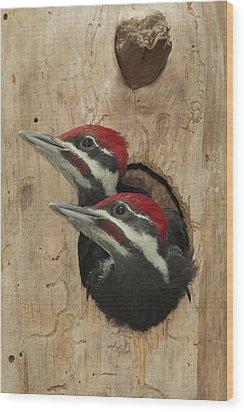Baby Pileated Woodpeckers Peer Wood Print by George Grall