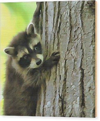 Baby Raccoon In A Tree Wood Print by Dan Sproul