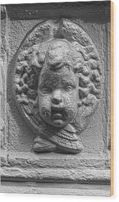 Baby Stone Face Wood Print by Robert Ullmann