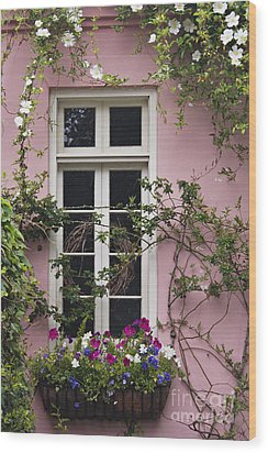 Back Alley Window Box - D001793 Wood Print