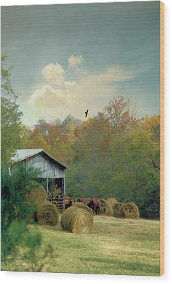 Back At The Barn Again Wood Print by Jan Amiss Photography