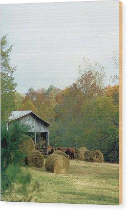 Back At The Barn Wood Print by Jan Amiss Photography