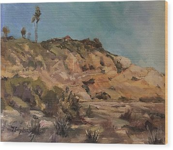 Back Bay Cliff 1 Wood Print