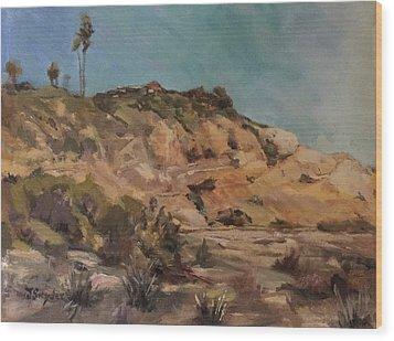 Back Bay Cliff Wood Print