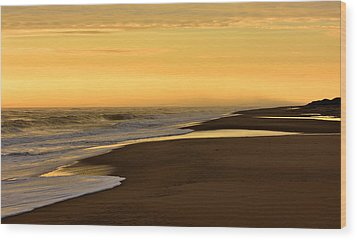 Back Bay Sunrise Wood Print