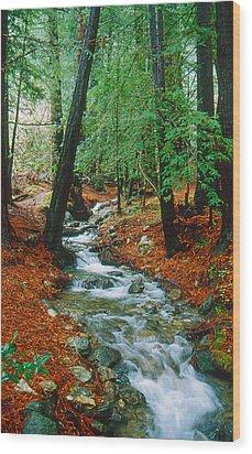 Back Country Creek Wood Print