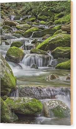 Back Country Stream Wood Print by Jon Glaser
