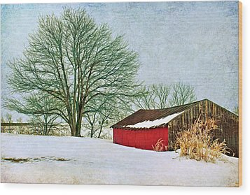 Back In The Day Wood Print by Nikolyn McDonald