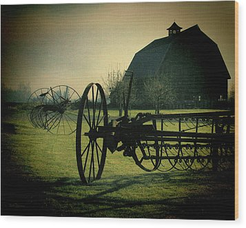 Back On The Farm Wood Print by DMSprouse Art