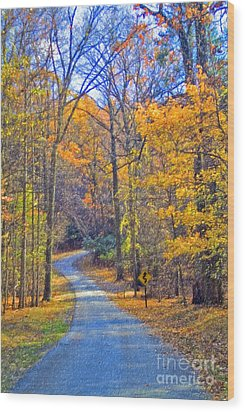Wood Print featuring the photograph Back Road Fall Foliage by David Zanzinger