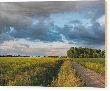 Wood Print featuring the photograph Backroad Between The Fields by Dmytro Korol