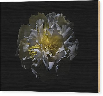 Wood Print featuring the photograph Backyard Flowers 25 Color Version by Brian Carson