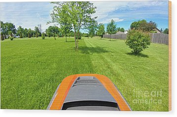 Wood Print featuring the photograph Backyard Mowing by Ricky L Jones