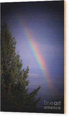Backyard Rainbow Wood Print by Marjorie Imbeau
