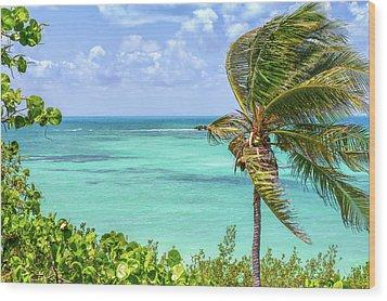 Bahia Honda State Park Atlantic View Wood Print by John M Bailey