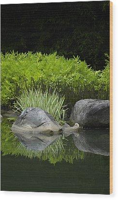 Balance Wood Print by Deborah Gallaway