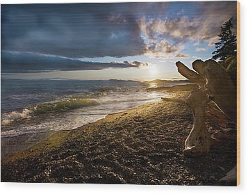 Balanced Evening Wood Print by Mike Reid