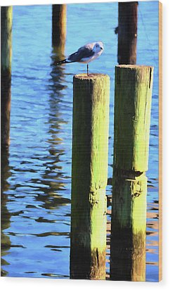 Wood Print featuring the photograph Balanced by Jan Amiss Photography