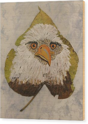 Bald Eagle Front View Wood Print