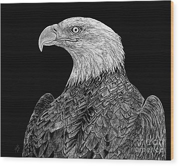 Bald Eagle Scratchboard Wood Print by Shevin Childers