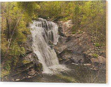 Bald River Falls Spring Wood Print