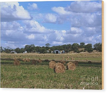 Bales Of Hay Wood Print