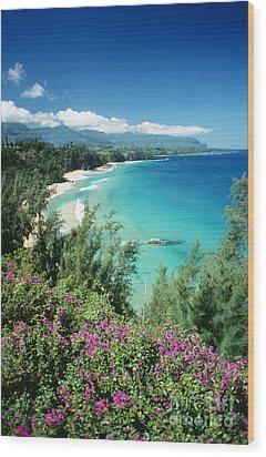 Bali Hai Beach Wood Print by Dana Edmunds - Printscapes