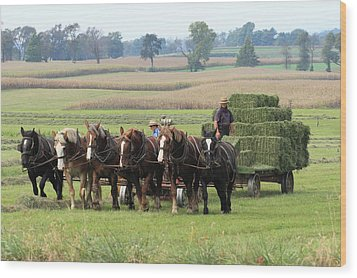 Baling The Hay Wood Print by Lou Ford