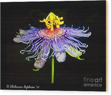 Ballet Wood Print by Rebecca Stephens