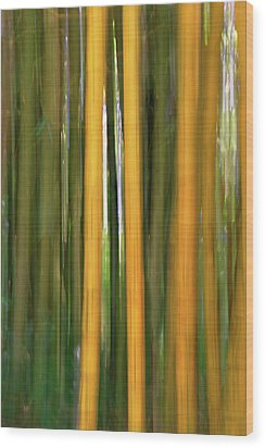 Bamboo Impressions Wood Print by Francesco Emanuele Carucci