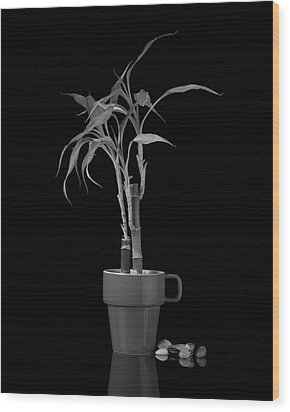 Wood Print featuring the photograph Bamboo Plant by Tom Mc Nemar