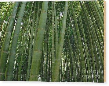 Bamboo Plantation Wood Print by Sami Sarkis